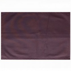 Wipe clean placemats Plain purple