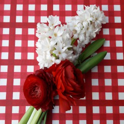 Cotton fabric cut Gingham red