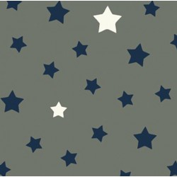 Cotton fabric Star grey/blue