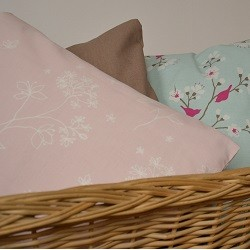 Coussin 25 x50